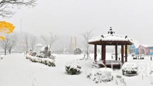 장성 황룡강 '힐링허브정원'의 눈 내리는 아침